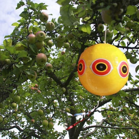 Bird-B-Gone MMSEB Scare Predator Eye Balloon Bird Repellent
