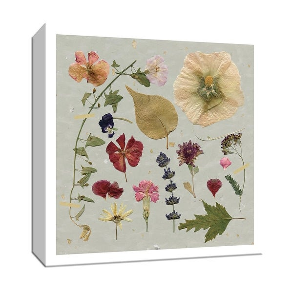 """PTM Images 9-147908 PTM Canvas Collection 12"""" x 12"""" - """"Pressed Assortment I"""" Giclee Flowers Art Print on Canvas"""