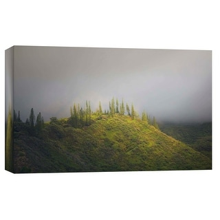 "PTM Images 9-102131  PTM Canvas Collection 8"" x 10"" - ""Life in Green"" Giclee Forests and Mountains Art Print on Canvas"