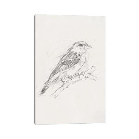 "iCanvas ""Avian Study II"" by Ethan Harper Canvas Print"
