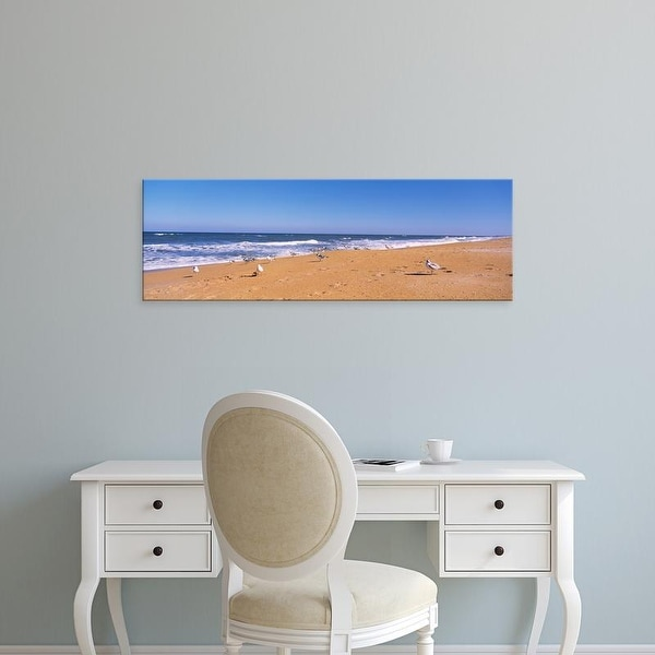 Easy Art Prints Panoramic Images's 'Flock of birds on the beach, Flagler Beach, Florida, USA' Premium Canvas Art