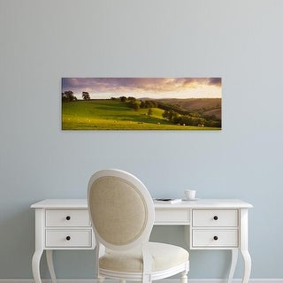 Easy Art Prints Panoramic Images's 'View of sheep grazing in a field, Bickleigh, Mid Devon, Devon, England' Canvas Art