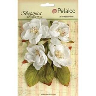 "White - Botanica Blooms 2.25"" 4/Pkg"