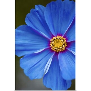 """Blue flower"" Poster Print"