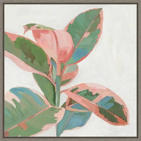 Pink Ficus I by Asia Jensen Framed Canvas Art