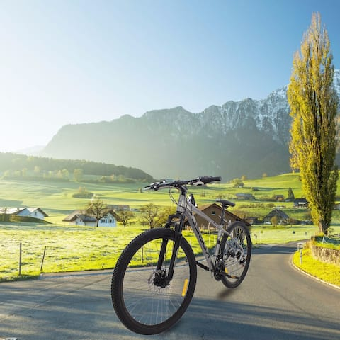 AOOLIVE Road Bike 29 Inch Kugel H-HYBRID GREY - 8' x 11'