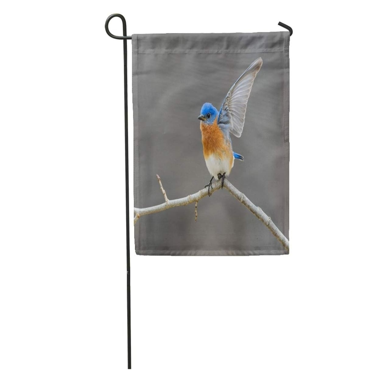 Blue Male Eastern Bluebird Open Wings Perched On Twig Avian Bird Garden Flag Decorative Flag House Banner 28x40 Inch N A Overstock 31334649