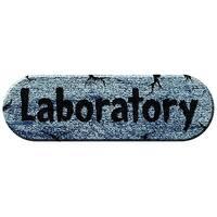 "18"" Ghouls Graveyard Laboratory Foam Plaque"