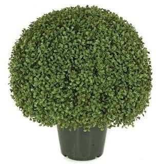 Autograph Foliages AUV-150050 20 in. Boxwood Ball Topiary Green