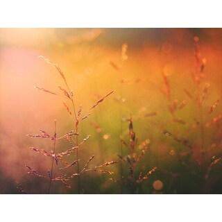 Golden Wheat Field Photograph Art Print