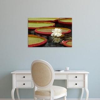 Easy Art Prints Adam Jones's 'Water Lily And Lily Pad Pond' Premium Canvas Art