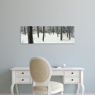 Easy Art Prints Panoramic Images's 'Chestnut Ridge Park Orchard Park NY USA' Premium Canvas Art