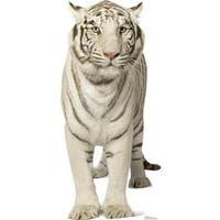 Advanced Graphics 1481 White Tiger