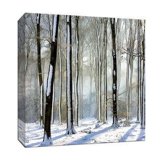 "PTM Images 9-146874  PTM Canvas Collection 12"" x 12"" - ""Enchanted Forest"" Giclee Forests Art Print on Canvas"