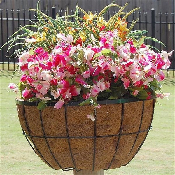 Shop Griffith Creek Designs 8240 20 In Newport Planter For 2 In X