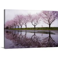 Kouji Tomihisa Premium Thick-Wrap Canvas entitled Rain Of Spring - Multi-color