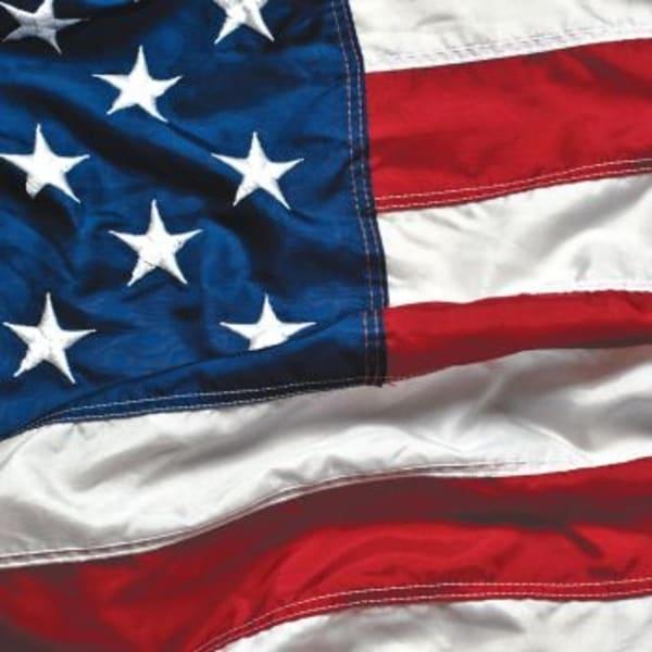 Shop Club Pack Of 192 Patriotic Symbol American Flag 2 Ply