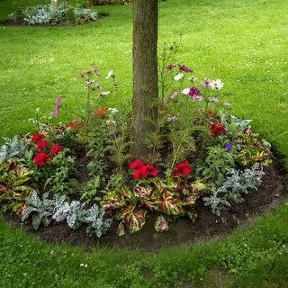 Shady Annual Pre-Seeded Flower Mat with Soil & Plant Food