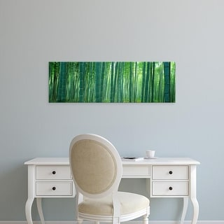 Easy Art Prints Panoramic Images's 'Bamboo Forest, Sagano, Kyoto, Japan' Premium Canvas Art