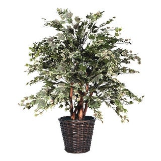 4' Silver Maple Extra Full - green, silver