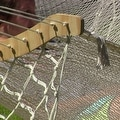 Sunnydaze Thick Cord Mayan Hammock with Curved Spreader Bars - Thumbnail 8