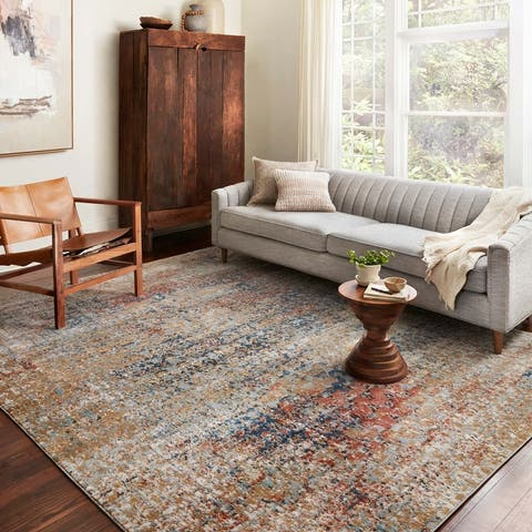 Alexander Home Charlotte Modern Transitional Distressed Area Rug