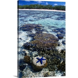 """""""Coral and blue star fish, Lady Elliot Island, Great Barrier Reef, Queensland"""" Canvas Wall Art"""