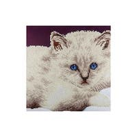 "Diamond Art Kit 12x12"" Intermediate White Cat"