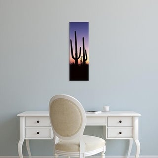 Easy Art Prints Panoramic Image 'Saguaro cacti, Saguaro National Park, Tucson, PimCounty, Arizona' Canvas Art