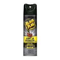Black Flag HG-11034 Ant & Roach Killer Aerosol, 17.5 Oz