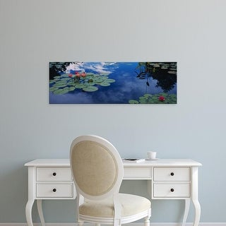 Easy Art Prints Panoramic Image 'Water lilies in pond, Denver Botanic Gardens, Denver, Colorado' Canvas Art