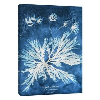 """PTM Images 9-105772  PTM Canvas Collection 10"""" x 8"""" - """"Natural Forms Blue 3"""" Giclee Seaweed Art Print on Canvas"""
