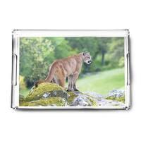 Mountain Lion - Lantern Press Photography (Acrylic Serving Tray)
