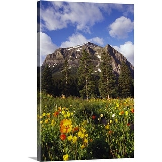 """""""Poppies and wildflowers blooming in front of mountain peak, Alberta, Canada."""" Canvas Wall Art"""