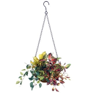 "9"" Assorted Greens Hanging Basket - N/A"