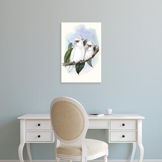 Easy Art Prints John Gould's 'Pastel Parrots IV' Premium Canvas Art