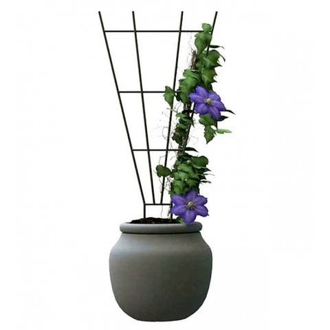 "Panacea⢠89635 Steel Fan Style Pot Trellis, Green, 15"" x 36"""