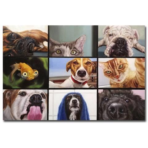 Animal Zoom by Lucia Heffernan Gallery Wrapped Canvas Giclee Art (24 in x 36 in)