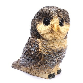 Owl Pot Bellys Box - Spotted Owl