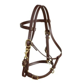 Berlin Custom Leather Bridle Beta Biothane Halter Flexible