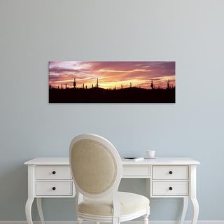 Easy Art Prints Panoramic Image 'Saguaro cacti on a landscape, Saguaro National Park, Tucson, Arizona' Canvas Art