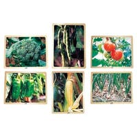 School Specialty Vegetable Puzzle Set