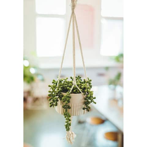Artificial Plant STRING OF PEARLS MACRAME HANGING CERAMIC DONKEY TAILS - ONE-SIZE