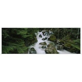 Poster Print entitled Waterfall in a forest, Kelley Creek, Mt Baker-Snoqualmie National Forest, King County, Washington
