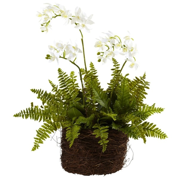Nearly Natural Mini Phalaenopsis & Fern with Bridsnest Planter