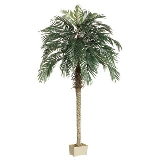Pack of 2 Potted Artificial Silk Phoenix Palm Trees 7' - Green