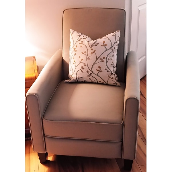Top Product Reviews for Darvis Grey Fabric Recliner Club