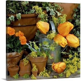 """Orange tulipa"" Canvas Wall Art"