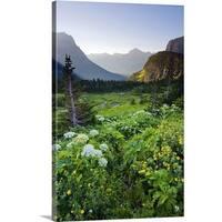 Premium Thick-Wrap Canvas entitled Logan Pass at sunrise in Glacier National Park, Montana. - Multi-color