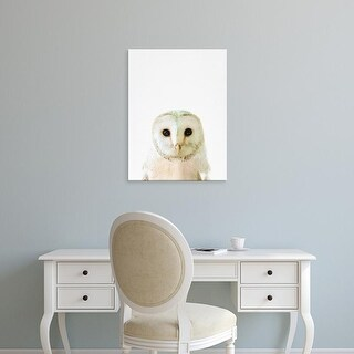 Easy Art Prints Tai Prints's 'Owl' Premium Canvas Art